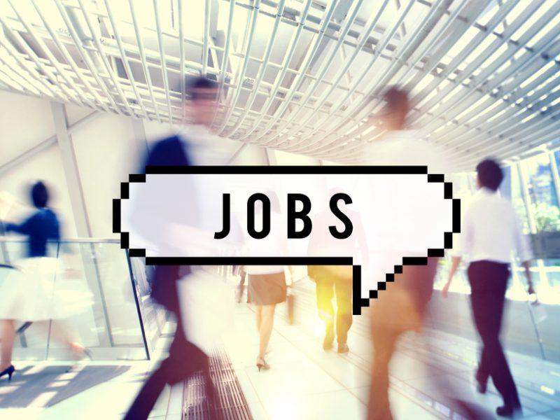 jobs-shutterstock_338972423-800x600